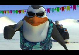 Schiffie & Co – Pinguïndans