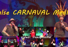 Halse carnaval medley (live)