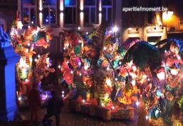 Carnaval Halle 2009: shows zondagavond
