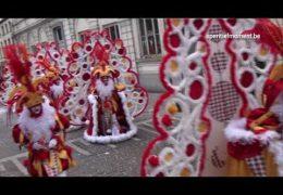 Carnavalstoet Ninove 2011